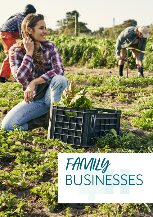 Family Businesses – Stepping stone guide