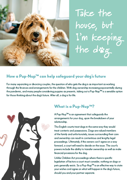 Pup-Nups™ – how we can help safeguard your dog's future
